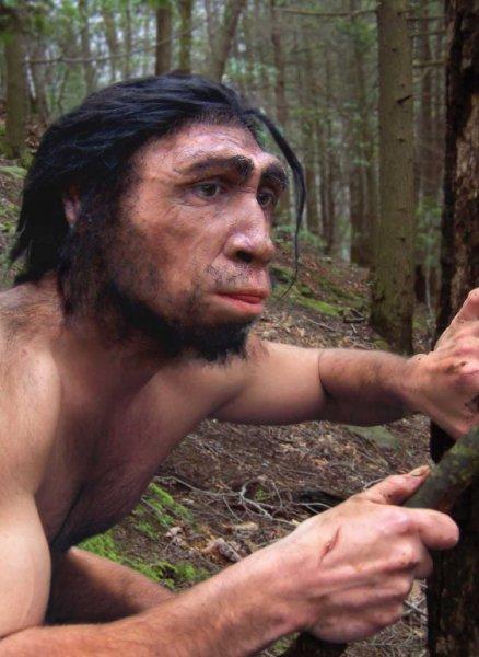 Антропологи: Лень – причина вымирания первых людей