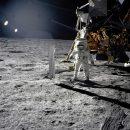 Ученые заселят Луну китайскими гусеницами и растениями