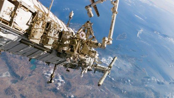 Российские космонавты обнаружили на МКС внеземную жизнь