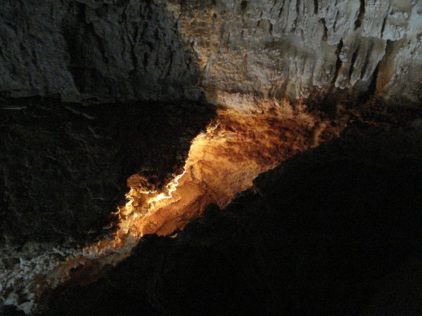 В пещерах Узбекистана ученые наткнулись на следы динозавров