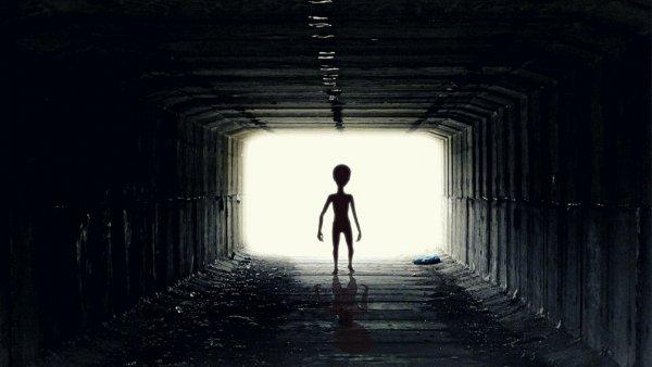 Исследователь: Пришельцы с Венеры прилетали на Землю в далеком прошлом