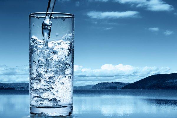 Ученые выяснили, как вегетарианская диета позволит сберечь запасы пресной воды