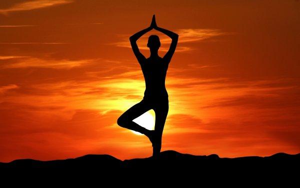 Йога по-умному: Учёные рассказали, как сжечь дневную норму калорий за пару часов