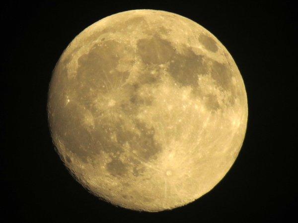 Эксперты назвали стоимость туристического полета вокруг Луны