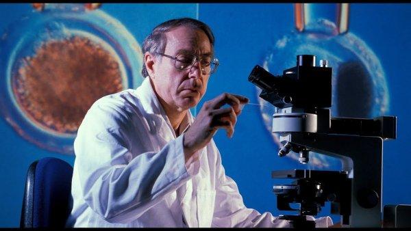Учёные нашли белок, препятствующий появлению шрамов на месте ран