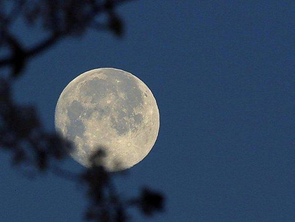 В Роскосмосе отказались от планов создания аппарата по изучению Луны