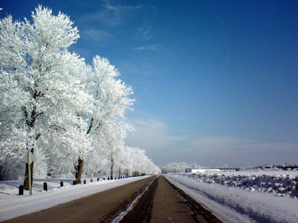 Ученые: В холодную погоду люди пьют больше алкоголя и губят печень
