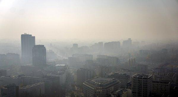 Загрязнение воздуха повышает риск умственной отсталости у детей  — учёные