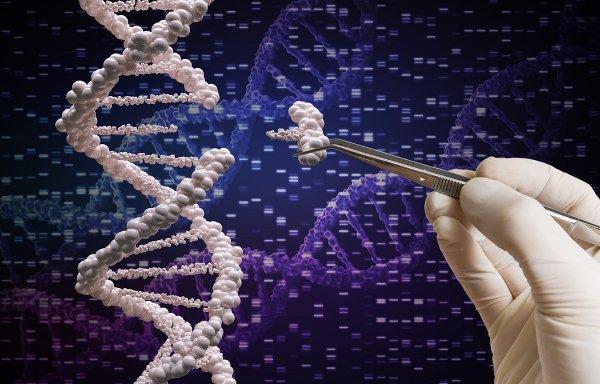 Эксперты назвали главные научные достижения и провалы 2018 года