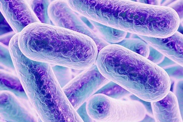 Популярные обезболивающие оказались причиной тяжёлой инфекции