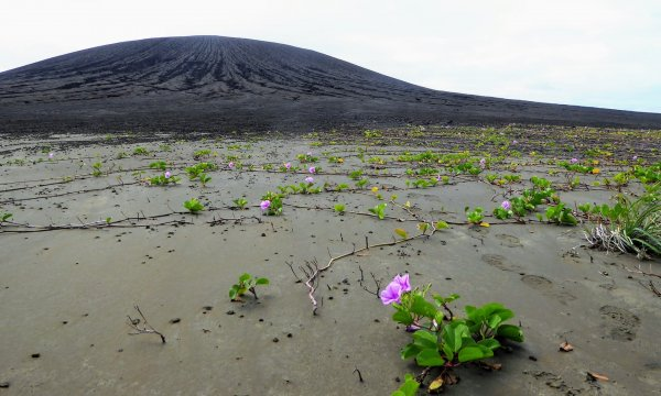 Загадочная грязь на новом вулканическом острове вызвала интерес ученых NASA