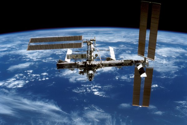 Биологическая катастрофа: На МКС обнаружены опасные бактерии