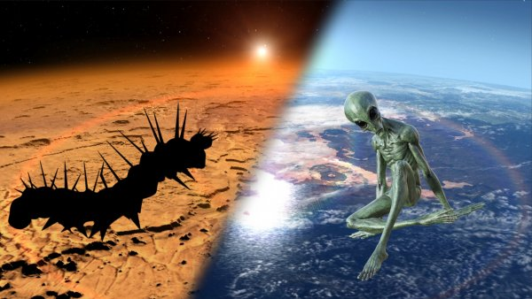 «Черви-потрошители» с Марса готовятся нанести удар по Земле: почему молчит NASA?