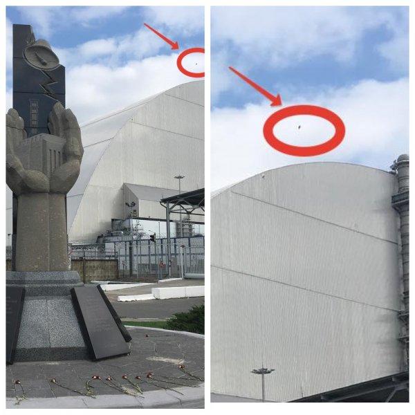 Убитые звери и яйцевидное НЛО над Припятью — В Чернобыле активизировались мутанты с Нибуру?