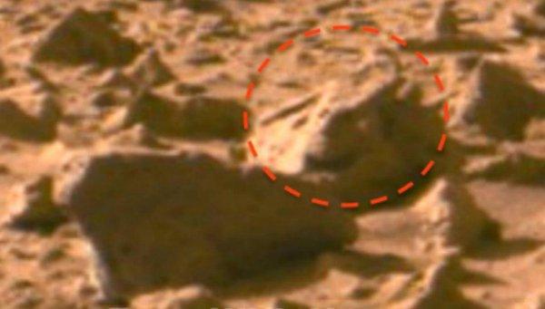 На Марсе обнаружили следы последней битвы – уфолог