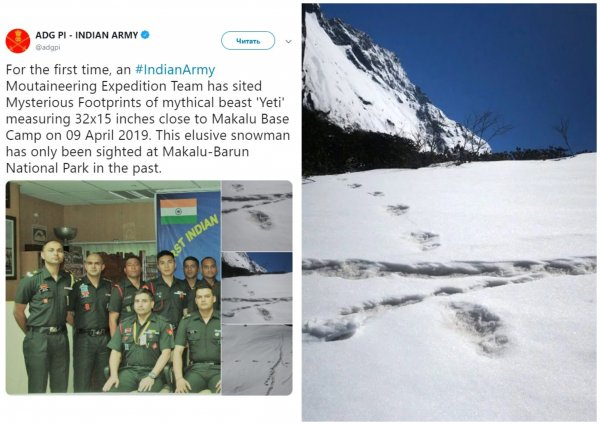 Передавал сигнал сородичам: Следы неуловимого йети найдены в Гималаях
