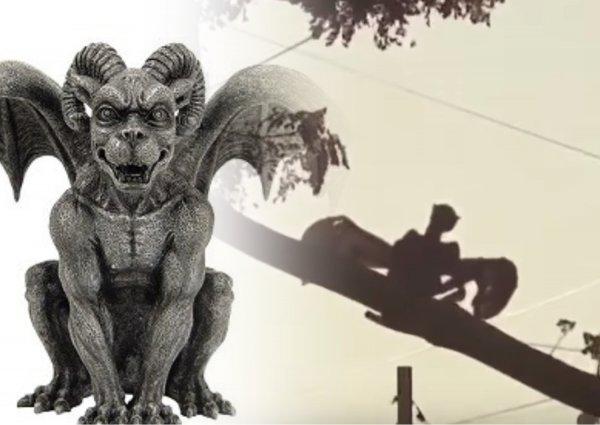 Крылатые демоны атаковали землян – Найденный череп горгульи может назвать дату конца света