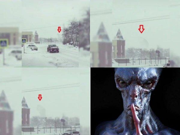 Чернобыльского Кинг-Конга «из пробирки» засняли на камеру