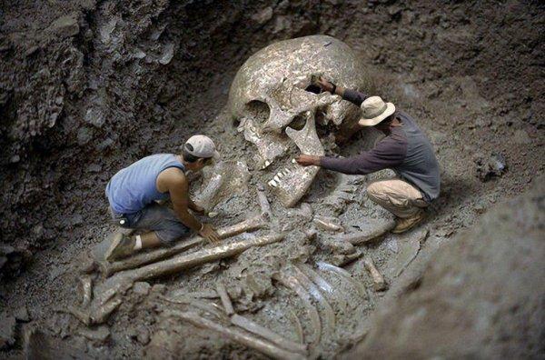Найдена раса Атлантов: Археологи откопали скелет 5-метрового великана в Сибири