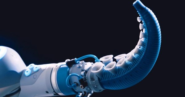 Учёные разработали датчики с присосками-«осьминогами»