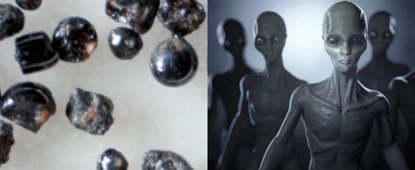 Уфолог: С 1872 года инопланетная икра «кишит» в океанах Земли