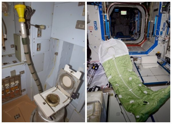 В тесноте и обиде: Что получат космические туристы на МКС за  млн?