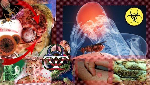 Нас превращают в мутантов? Ученые РФ уличили США в создании биологического оружия
