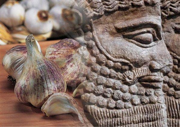 Долгожители с Нибиру — Короли пришельцев повышали потенцию чесноком