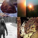 Шерсть и мерзкий запах: Неизвестные существа нападают на прохожих в России и Украине