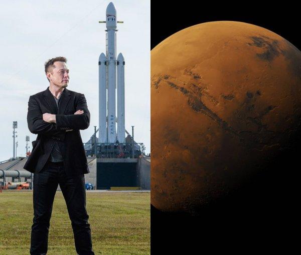Илон Маск перепутал Луну с Марсом: «Гения» XXI века высмеяли за незнание планет