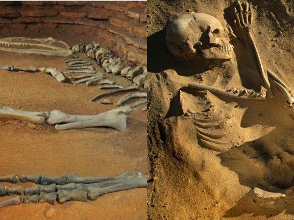 Копи Царей Нибиру: Драгоценные металлы на Землю «занесли» астероиды