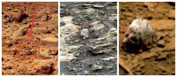 На Марсе нашли черепа пришельца: Земля была древней стоянкой инопланетян – уфологи