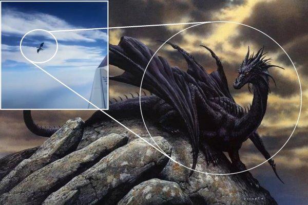 Дракон с Нибиру напал на самолёт России: Ящер атаковал Землю перед вторжением 28 июля