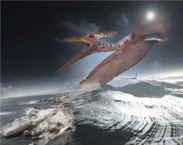 Динозаврам мороз не помеха: На Плутоне найден скелет птеродактиля