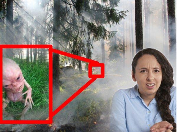 Мерзкий подкидыш: Пришелец-гоблин напал на грибника в Красноярске
