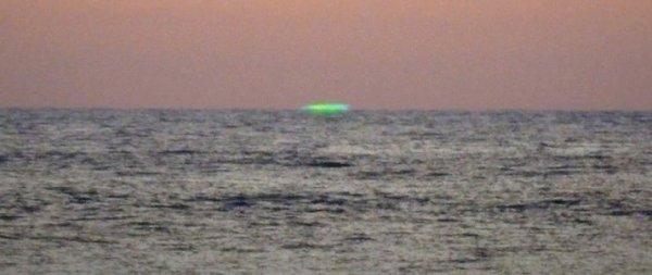 Российские туристы в опасности! В Черном море обнаружены неизвестные науке существа