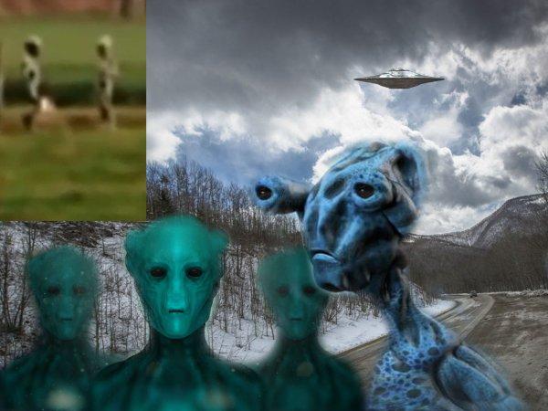 Зловещая мгла над Выборгом: Пришельцы мигрируют из Финляндии в Россию