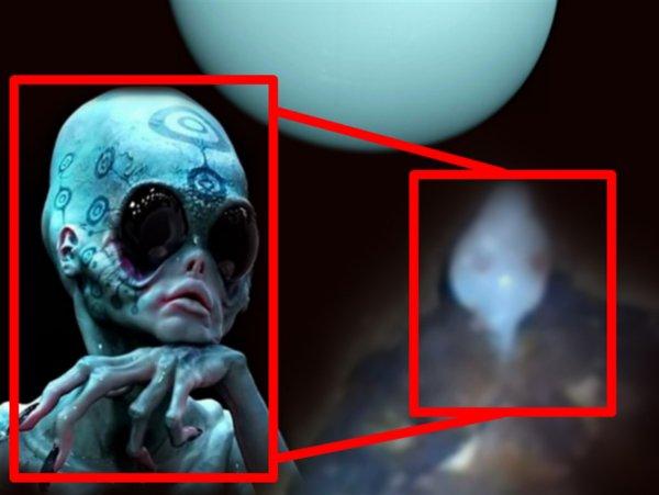 Чужой с Урана: В Метро Москвы нашли «голубого» пришельца-гоблина