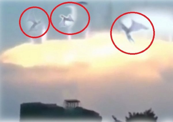 Россия сгорит 30 августа: Ангелы с Нибиру взорвали вулкан на Камчатке