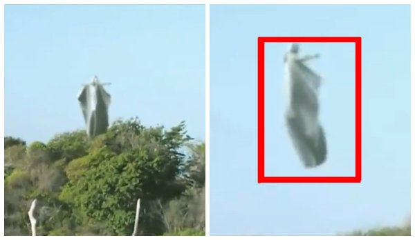 Пришельцы-ангелы появились в небе над Уралом — Пришельцев заметили во время обряда