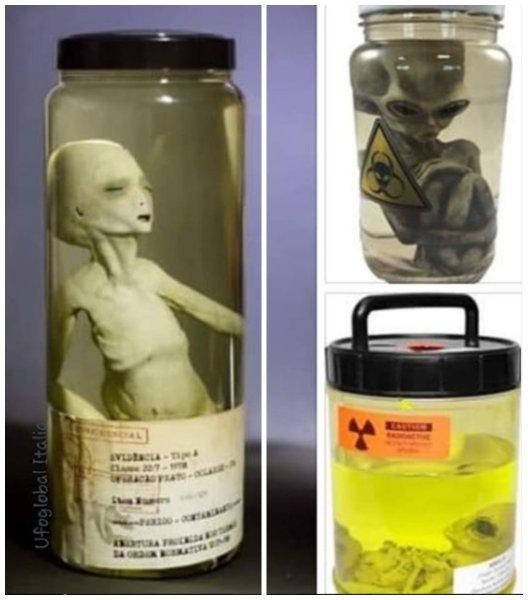 Прятал 28 лет! Бывший сотрудник советской лаборатории показал эмбрион пришельца