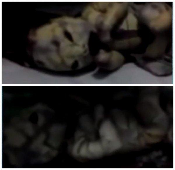 Отец с неба: На Урале девушка родила от пришельца
