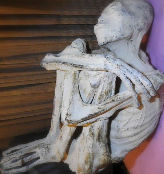 Раскрыт секрет происхождения трехпалой мумии без ушей, найденной в Перу