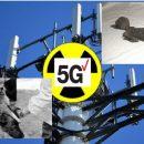 Маяк для Нибиру: 5G в Москве превращает людей в 3-метровых тварей