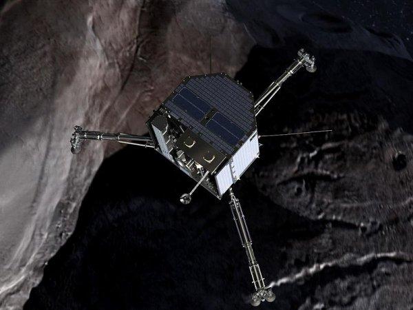 «Невозможное возможно!» На стремительно летящем к Земле астероиде обнаружили жизнь