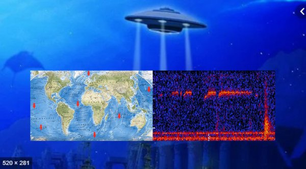 Гуманоиды орут в океане: «Визжащие» звуки пришельцев обнаружены в Баренцевом море