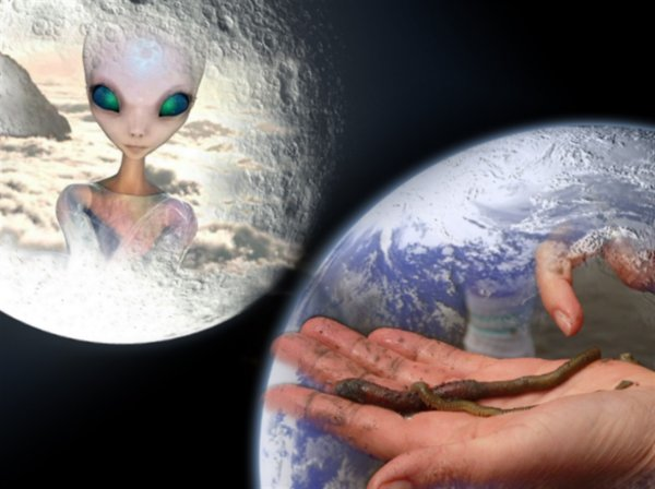 Черви-живоглоты атакуют Землю и Луну - эксперт