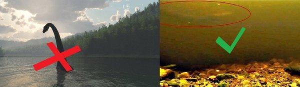 Открыт новый таинственный монстр в озере Лох-Несс – эксперты