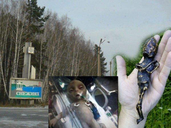 На Урале нашли пришельца: Серый карлик залез в дом к пенсионерке