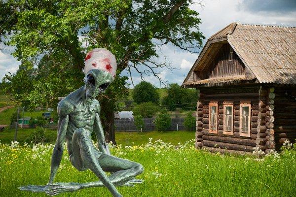 Раненный инопланетянин пришел в деревню к людям — рассказ очевидца